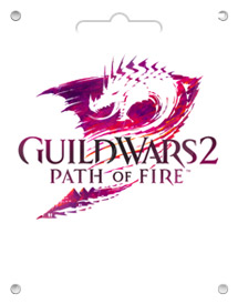 guild wars 2 global cd key