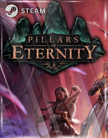 pillars of eternity hero edition steam key [global]