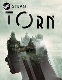 torn steam key [global]